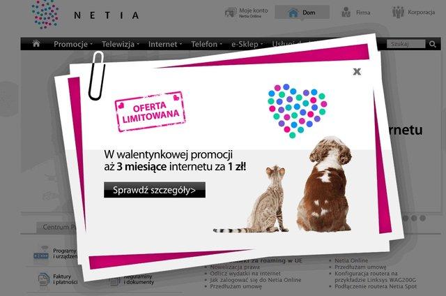3 miesiące internetu za 1 zł na Walentynki od Netii